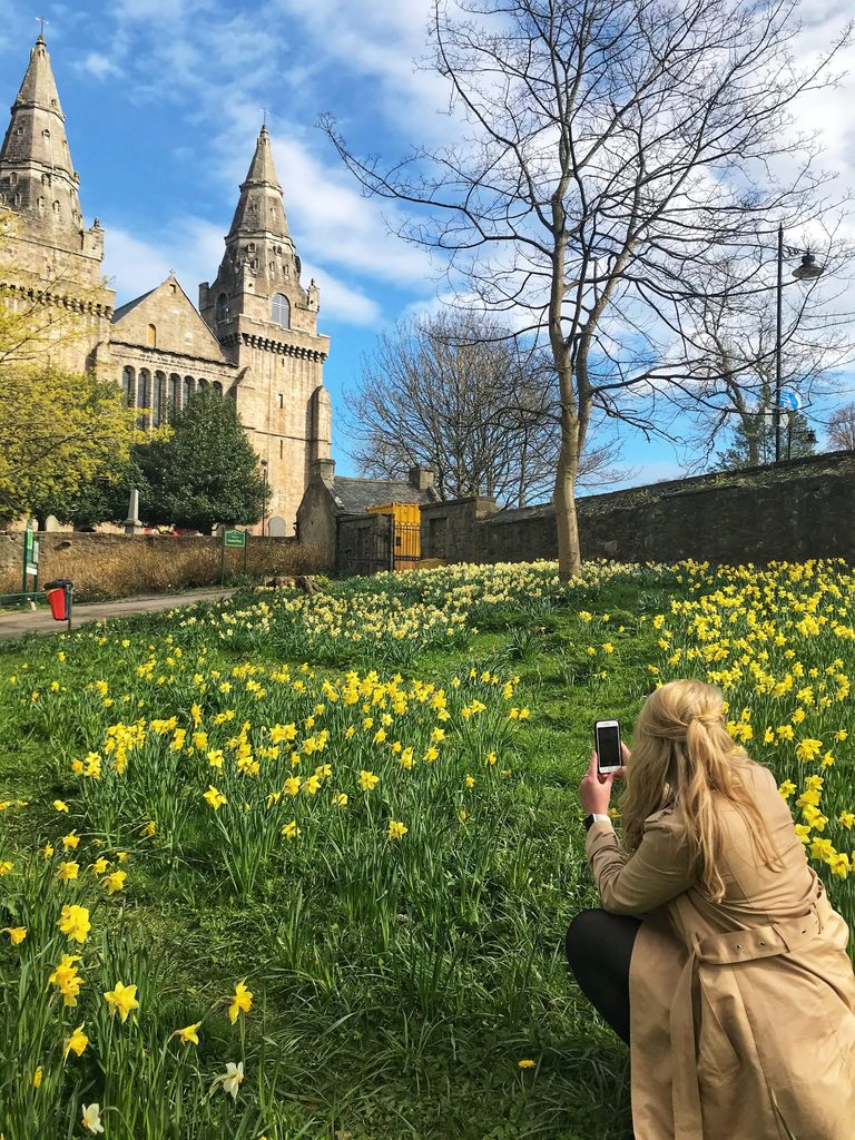 Lauren Mitchell surrounded by daffodils, taking a photo of St Machar Cathedral in Aberdeen